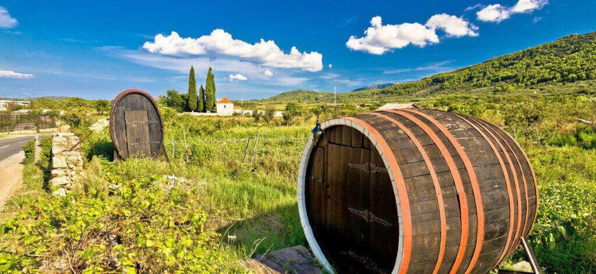 Wine Barrels on Hvar island